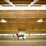 Horse Barn Timber